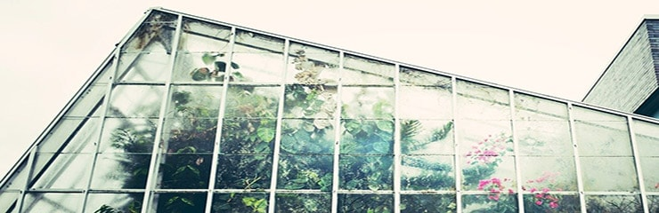 Does-a-Greenhouse-Work-in-the-Winter