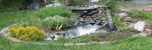 How-Small-Can-a-Garden-Pond-Be