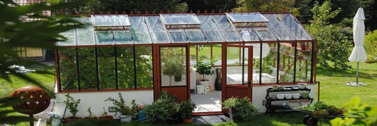 What-to-Grow-in-a-Greenhouse-in-Summer
