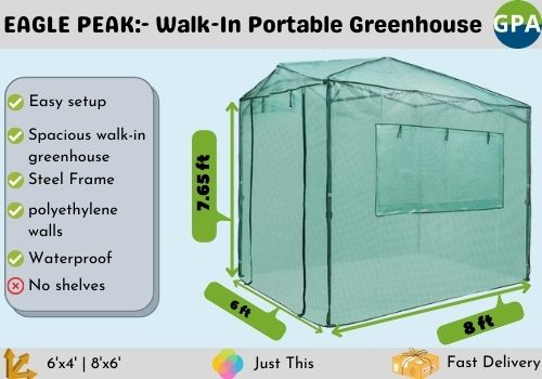best mini portable greenhouse for the money